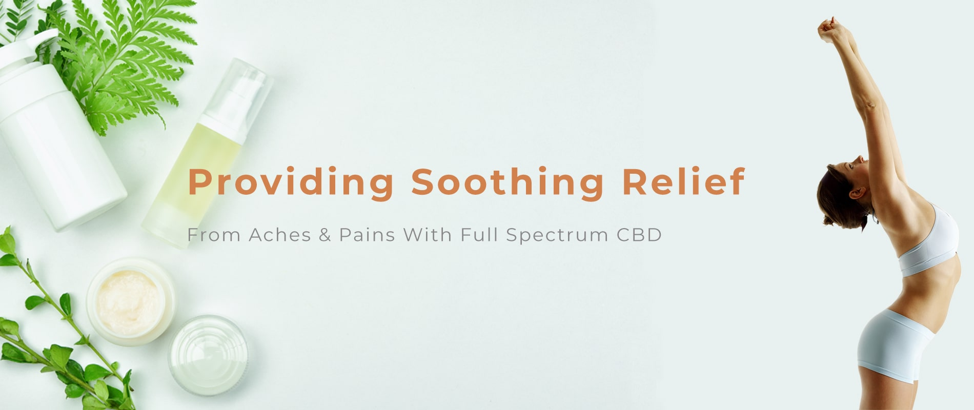 Bear Wellness Full Spectrum CBD